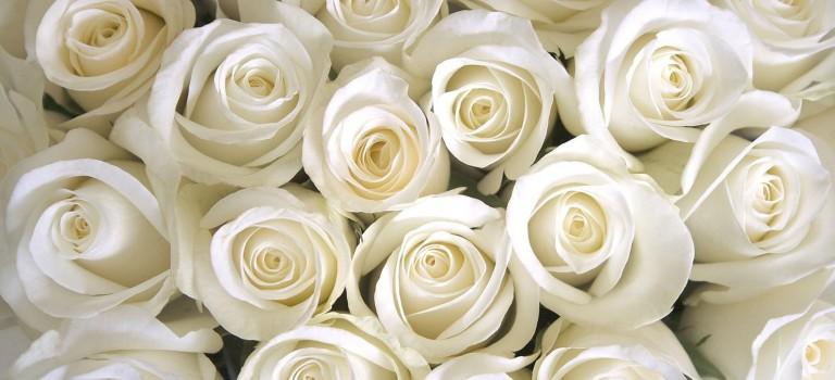 Wedding Floral Décor