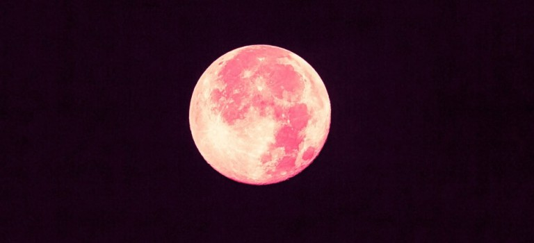 Pink Moon to take place on Friday